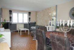 image_de_salon_sejour_f_lecouimmobilier_achat_vente_location_vitry_mericourt_eleu__1060431